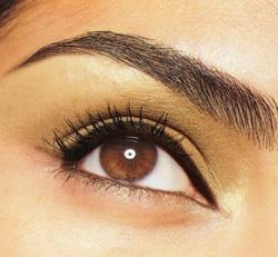 perfect-eyebrow