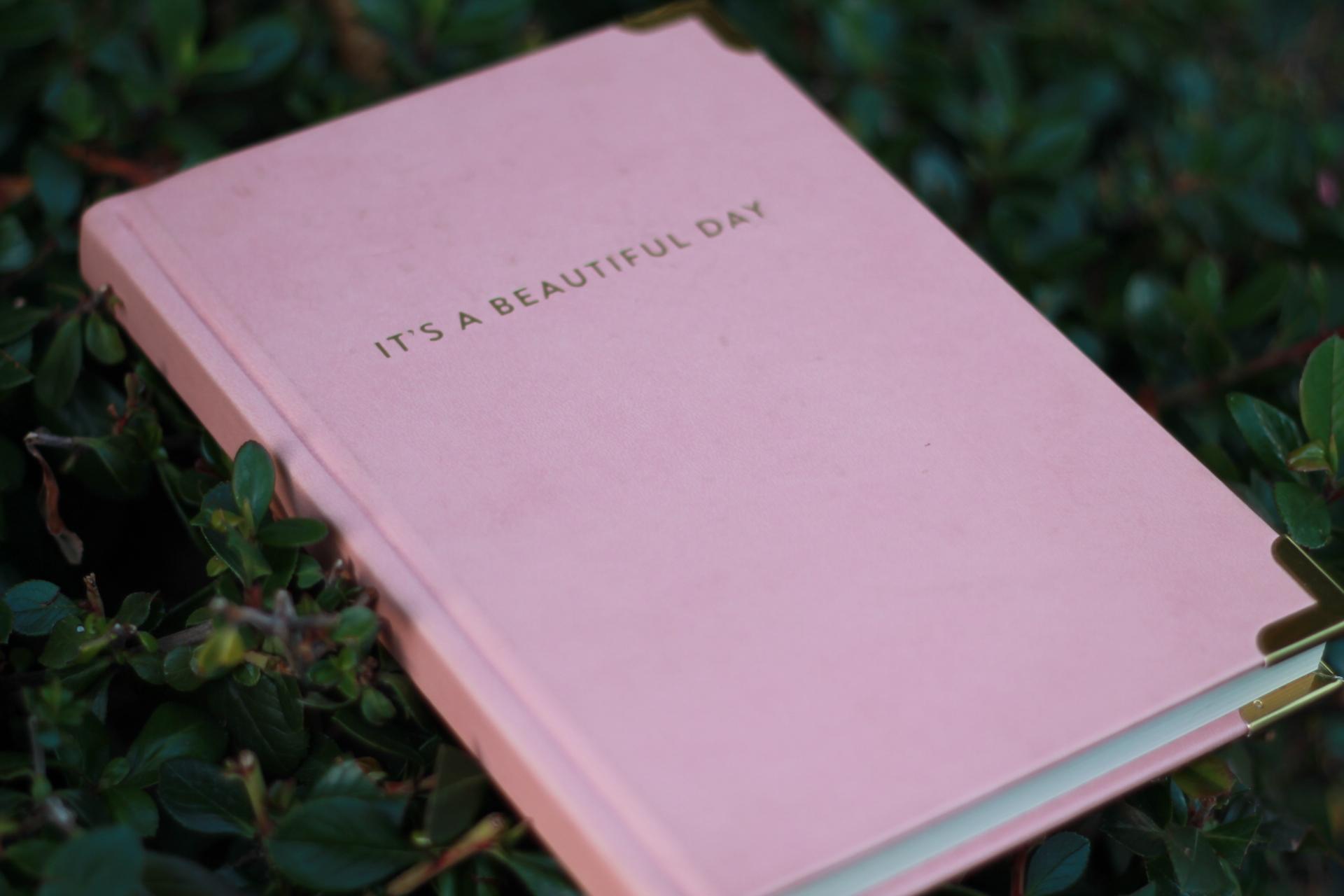 Pretty pink journal