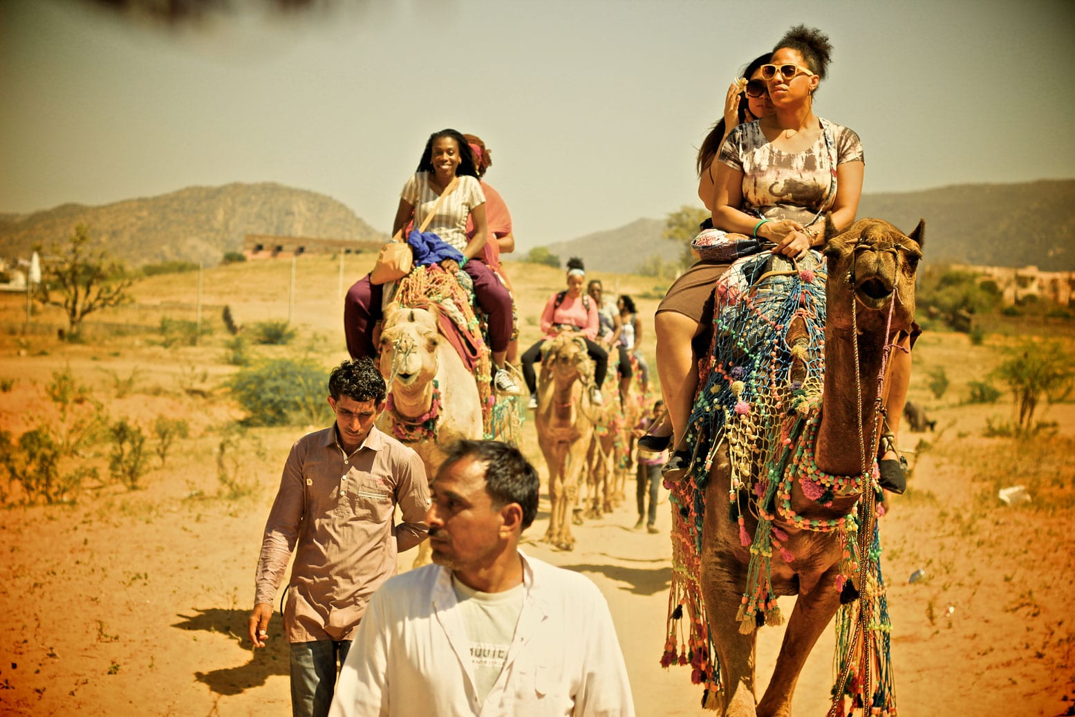 Nomadness_India_Camels