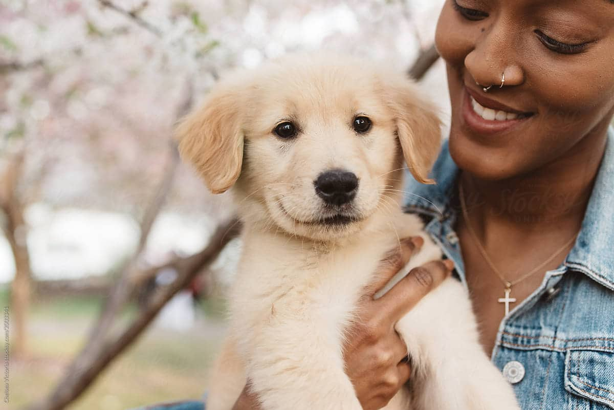 black-woman-with-dog