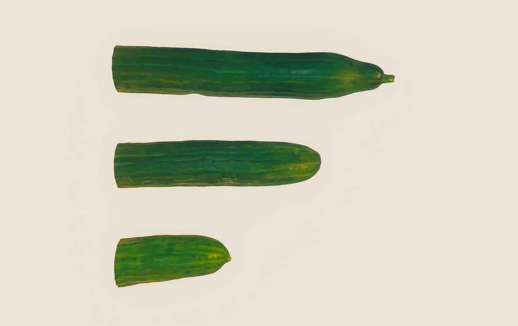 vegetables cucumbers