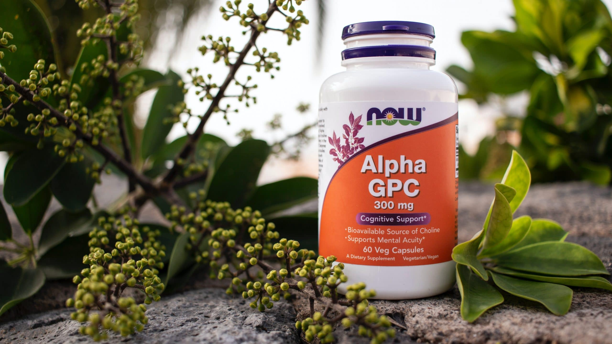 nootropics-supplements-pills