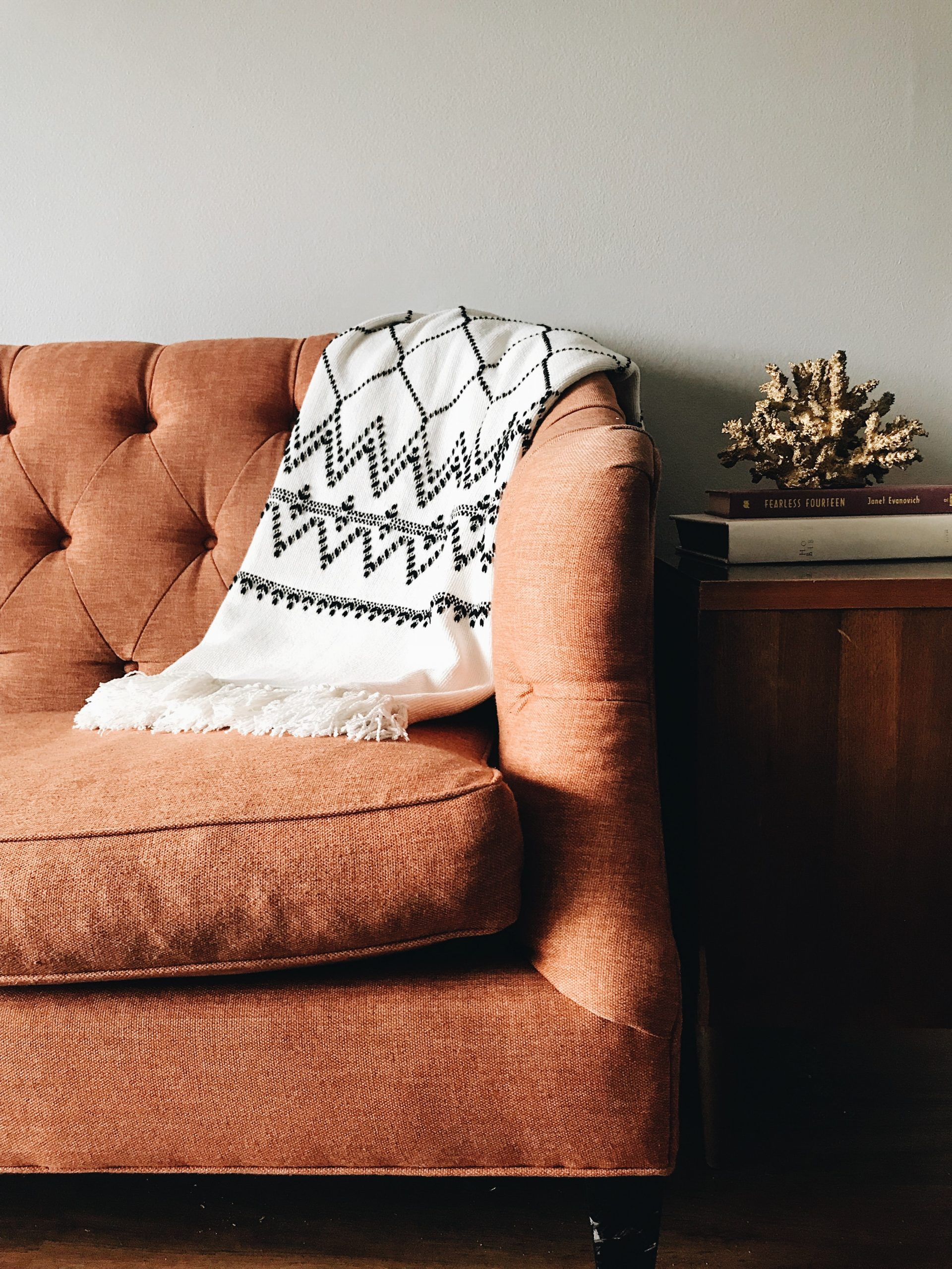 cozy sofa with throw blanket